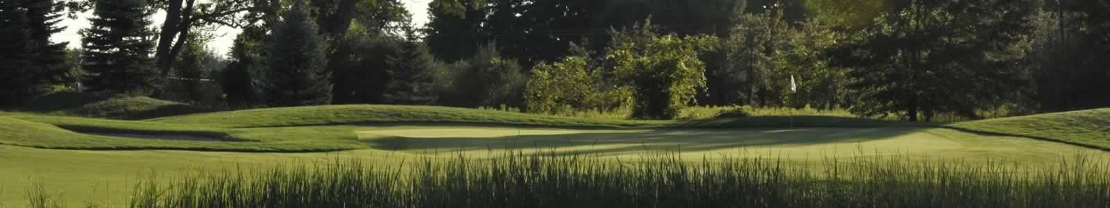 non home header golf courses michigan