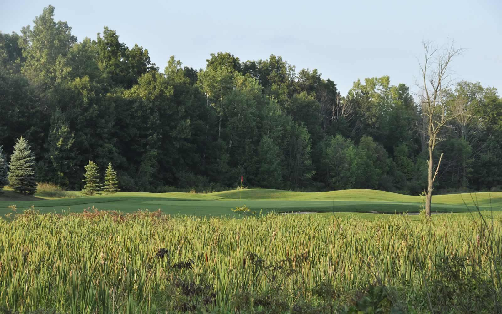 Vosted Best Golf Courses in Livingston County